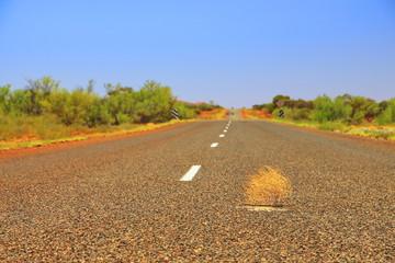 Tumbleweed on Australian highway