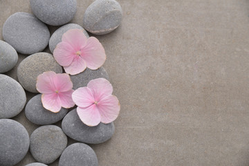 Three Pink hydrangea petals with pile of gray stones on gray background