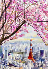 Cherry blossoms and Tokyo Tower landmark of Japan.