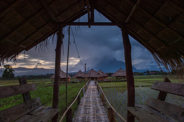 Beautiful landscape nature green Terraced Rice Field of Rainy Season and hut on Mountain in nature,Chiang Dao, Chiang Mai, Thailand