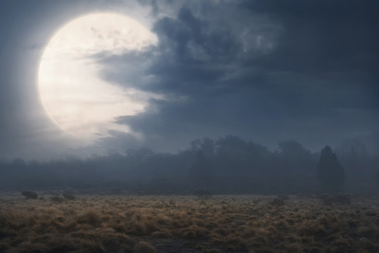 Field with fog and dark clouds