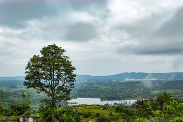 Morning mist above the reservoir and the trees at Phetchabun in Thailand.