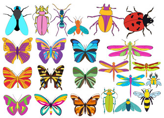 insects, butterflies, flies, dragonflies, beetles, large set