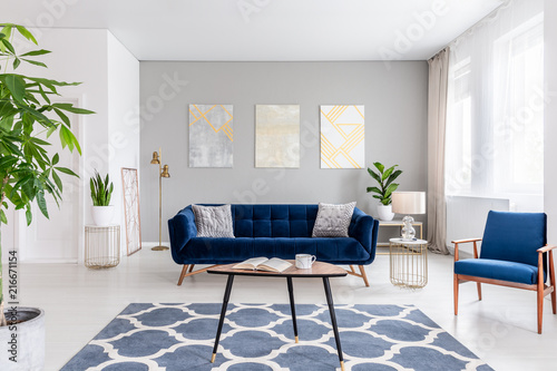 Real photo of an elegant living room interior with a blue ...