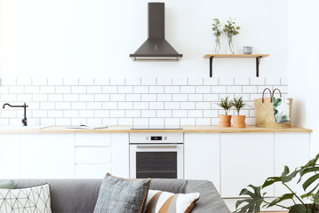 Stylish scandinavian open space with kitchen accessories, plants. Design room with white walls.