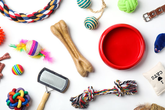 Flat lay composition with accessories for cat and dog on white background. Pet care