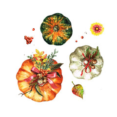 Autumn Pumpkins. Watercolor Illustrations.