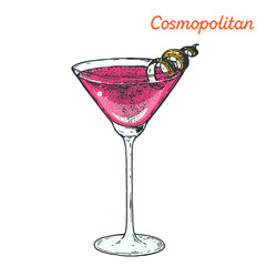 Cosmopolitan cocktail illustration. Alcoholic cocktails hand drawn vector illustration.