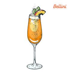 Bellini cocktail illustration. Alcoholic cocktails hand drawn vector illustration.