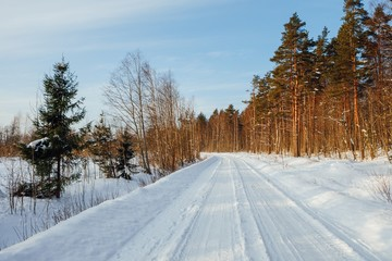 winter forest road at sunny day in Finland
