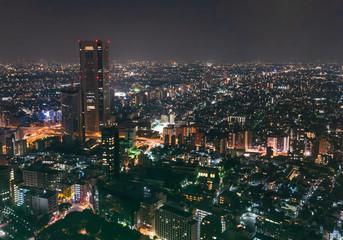 都庁が眺める東京都市風景 夜景