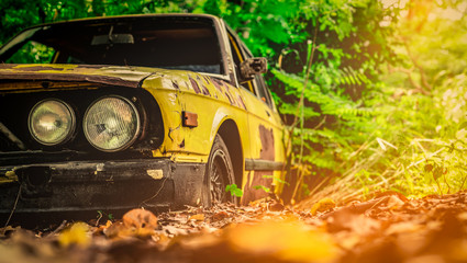 Photo sur Toile Vintage voitures Old wrecked car in vintage style. Abandoned rusty yellow car in the forest. Closeup front view headlights of rusty wrecked abandoned car on blurred green tree background . Art of abandoned used car.