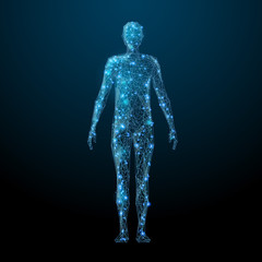 Fototapeta Human body low poly wireframe. Vector polygonal image in the form of a starry sky or space, consisting of points, lines, and shapes in the form of stars with destruct shapes. obraz