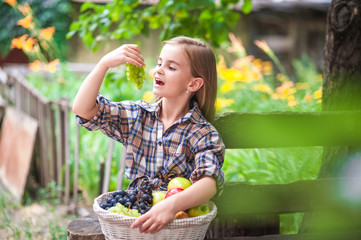 Girl with a basket of fruit in the garden. Beautiful little farmer girl holding and eating organic fruits, grapes, apples. The concept of harvest. Garden, Toddler eating fruits at fall harvest.