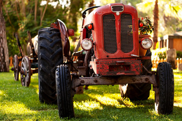 Wall Mural - An old vintage red tractor near a farm field at sunset