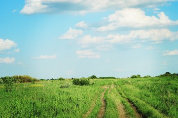 Summer nature photography/ Blue sky with clouds, green field, the road going into the distance