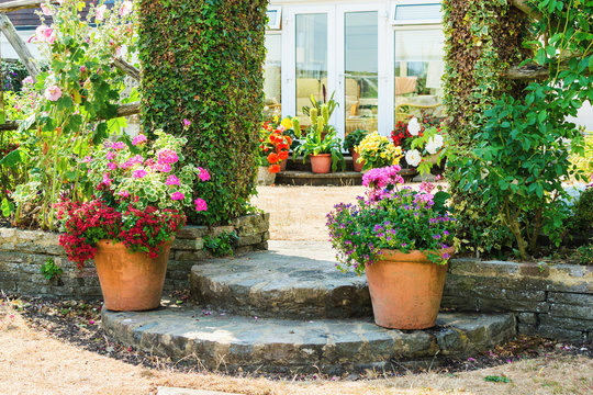 Beautiful backyard garden full of colorful flowers in pots and containers, selective focus