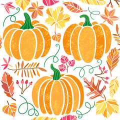 Vector pumpkin illustration set isolated on white