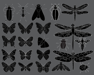 set of insects, beetles, butterflies, dragonflies, silhouette