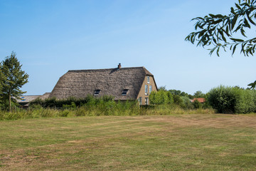 Typical Dutch historic farmhouse with thatched roof in the countryside in the polder in the Krimpenerwaard. The Netherlands, Europe.