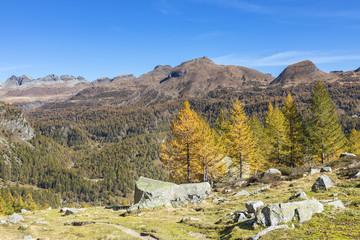 View of the Alpe Veglia and Alpe Devero Natural Park in autumn season from the Buscagna Valley (Alpe Devero, Baceno, Verbano Cusio Ossola province, Piedmont, Italy, Europe)