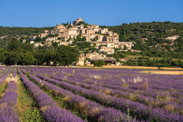 The village of Simiane-la-Rotonde in summer with lavender fields. Alpes-de-Hautes-Provence, Alps, France