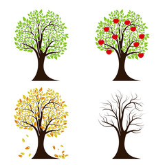 Tree in four seasons. Spring, summer, autumn, winter. Isolated on white background. Vector