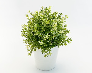 White - green  plastic decorative flower in a white plastic pot is on a white background