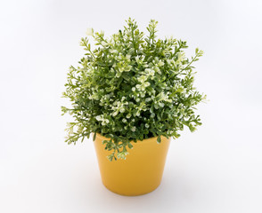 White - green plastic decorative  flower in a yellow plastic pot is on a white background