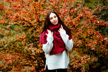 Autumn portrait of a girl in the Park. Young brunette woman in a gray warm sweater walking in the autumn Park, cluttering in a red cozy scarf