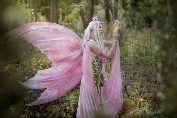 Fairy in a magic forest
