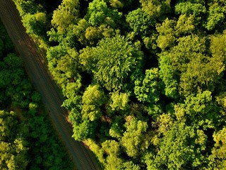 Aerial photo of a rail way crossing a forest