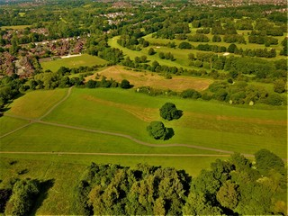 Aerial green landscape of a city park