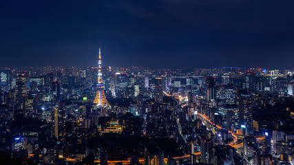 Wall Mural - Tokyo cityscape at night, Japan.