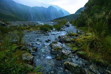 beautiful scenic of natural trail in fox glacier most popular traveling destination in southland new zealand