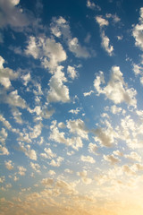 Nice small clouds. Cute fluffy cirrus clouds on blue pink sunset sky, background with a gradient effect.