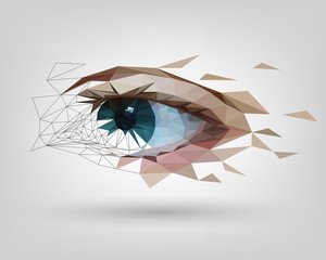 Low polygonal human eye is scattered, vision