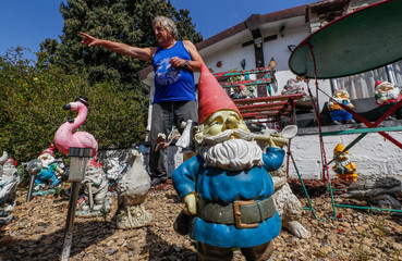 Belgian Gilbert Rassart, an amateur guitarist and former customs agent, stands among some of the hundreds of garden gnomes he started collecting in 2009, in the village of Avennes