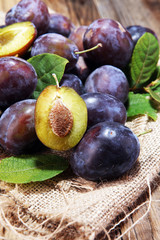 Plums on rustic background. Half of blue plum fruit. Many beautiful plums with leaves