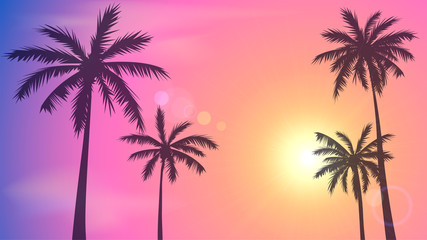 Background with sunset sky and palm trees, tropical resort, Miami