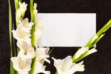 Obituary or death notice concept.