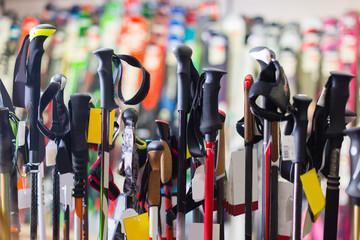 Image of large selection of ski poles