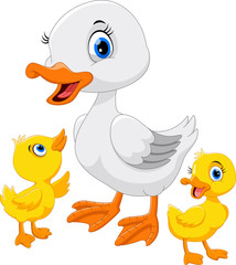 Mother duck with her three little cute ducklings