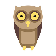 Owl flat illustration