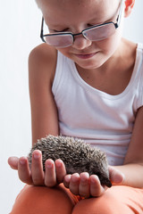 happy child examines young hedgehog and shows it to children. Hands with mammal. close-up. concept of healthy lifestyle in nature, the love of peace, respect for nature, motherhood in farm