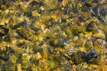 Texture. Water, sand, glare on the water, yellow
