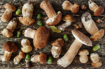 Mushroom Boletus over Wooden Background. Autumn Cep Mushrooms. Cooking delicious organic mushroom. Gourmet food