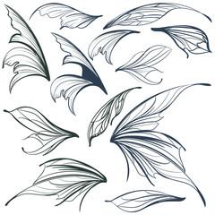 Set of vector filigree fairy wings for design