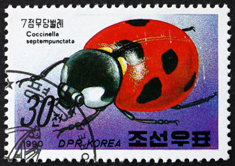 Postage stamp North Korea 1990 Lady Bug, Insect