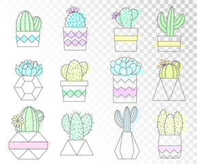 Vector set of cacti and succulents in flower pots. Flat style. line art. Colored collection.